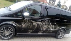 Cars_Leopard