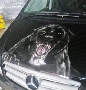 Cars_Leopard2__970x1024_