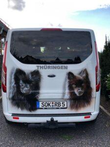 Hunde_Ford_4