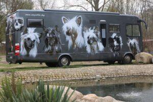 Hunde_Wohnmobil_2